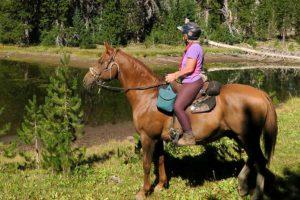 jeździectwo konne